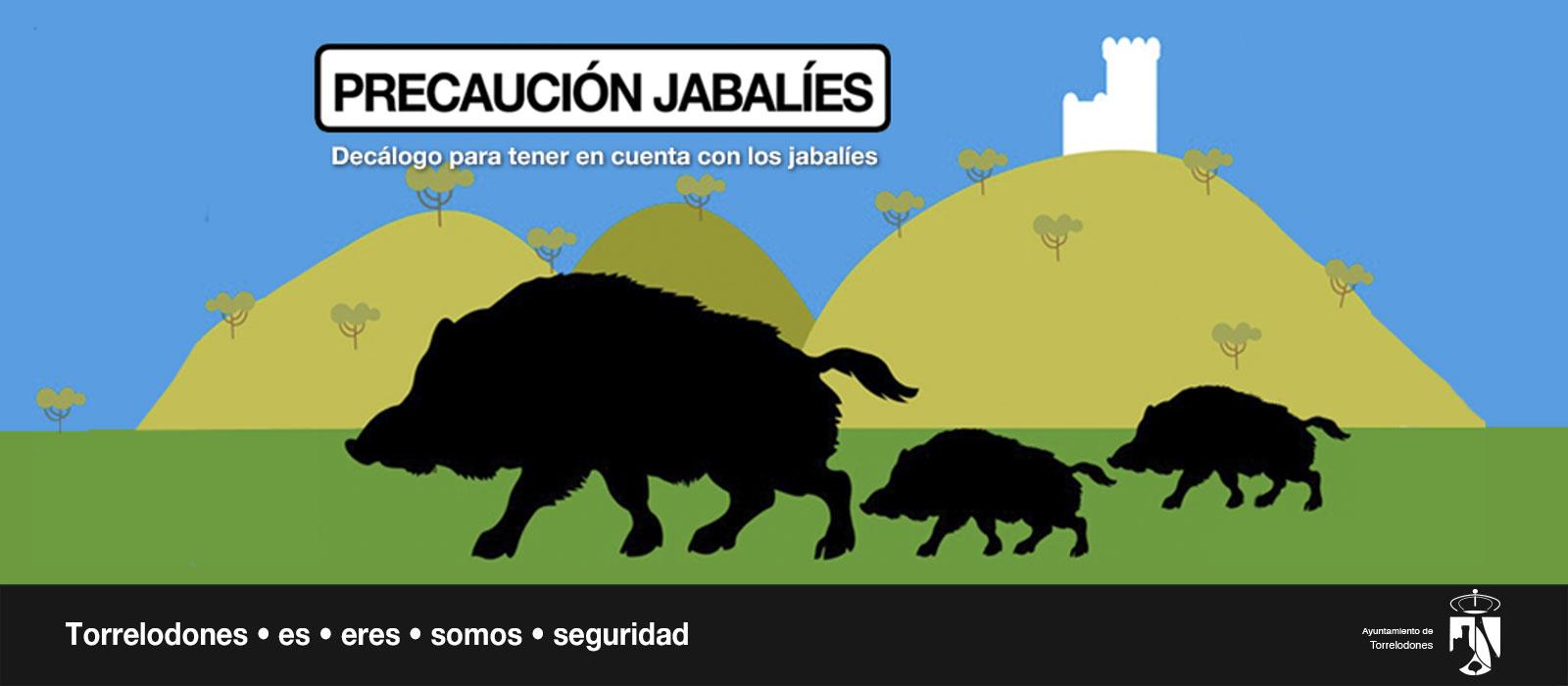 atencion-jabalies