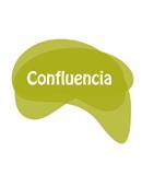 Grupo Municipal Confluencia Ciudadana