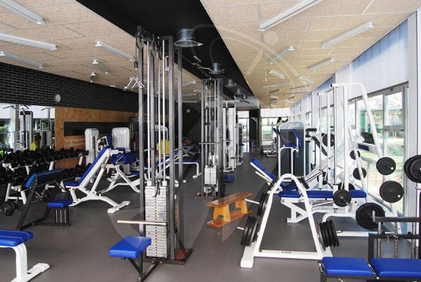 Sala de musculaci n ayuntamiento de torrelodones for Gimnasio musculacion