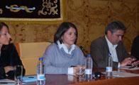 El Pleno no otorgó su confianza a la Alcaldesa de Torrelodones